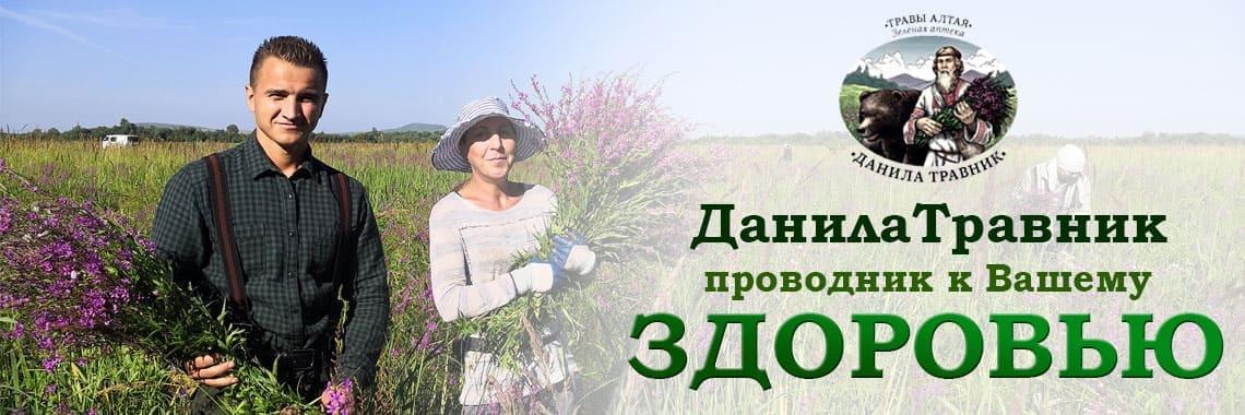 Данила Травник - фитосборы из трав Горного-Алтая
